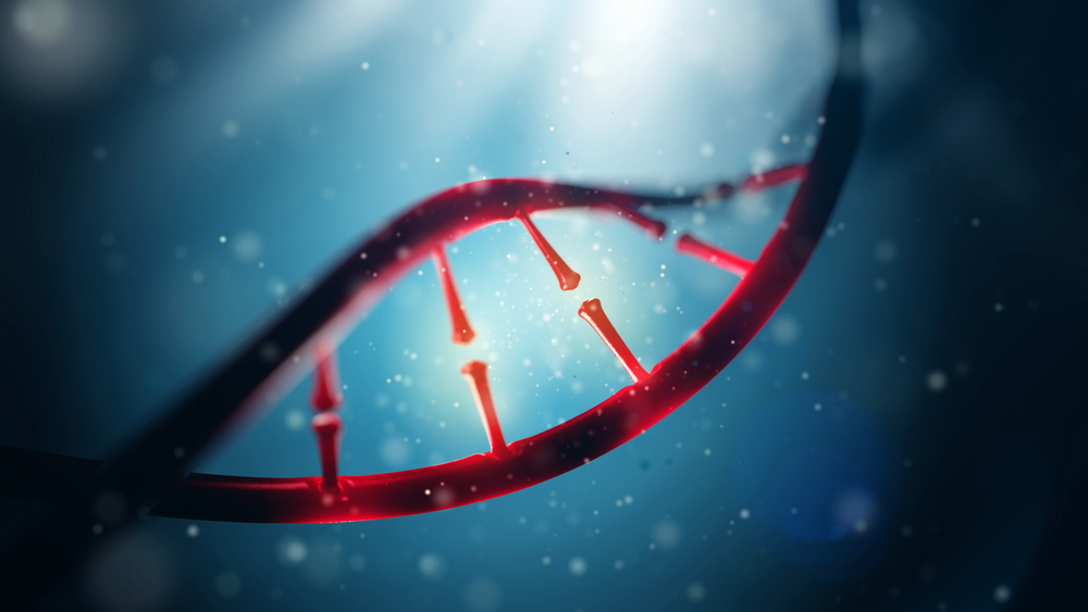Our genomes, unzipped
