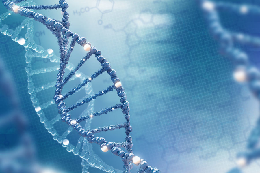 What Does Genetic Distance Mean? - Genomes Unzipped